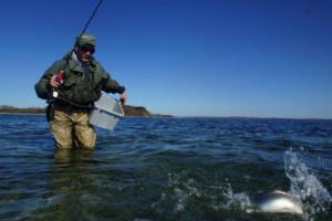 lystfisker_avernakoe